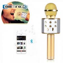 Mic Karaoke Kèm Loa Di Động Kết Nối Bluetooth Chính Hãng WSTER WS- 858