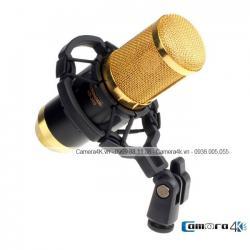 Microphone Hát KaoraKe Cho Điện Thoại BM-800
